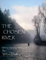 Image for The Chosen River; Writings from Days Well Spent