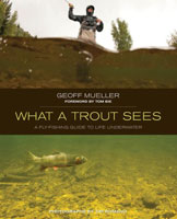 Image for What A Trout Sees: A Fly Fishing Guide to Life Underwater