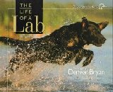 Image for The Life of a Lab
