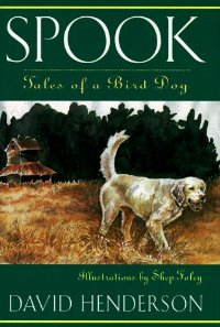 Image for Spook, Tales of a Bird Dog