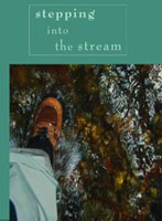 Image for Stepping Into the Stream (DVD)
