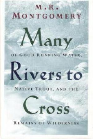 Image for Many Rivers to Cross